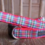 Scrufts' Royal Stewart Tartan Dog Collar and Lead