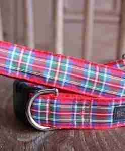Union Jack and Tartan Dog Collars and Leads