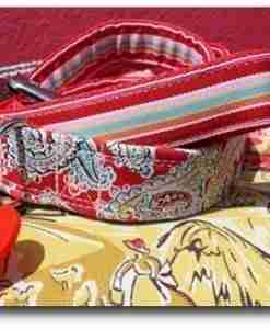 Gypsy collar and lead set
