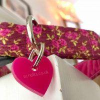 Plumpton Corduroy Dog Collar