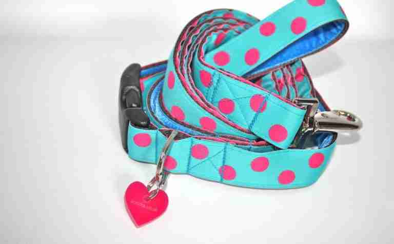 Scrufts' Tropical Dog Collar and Lead
