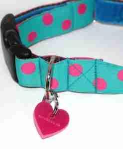 Scrufts' Tropical Dog Collar