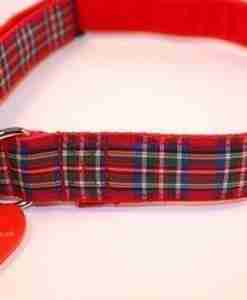 Royal Stewart collar and lead set