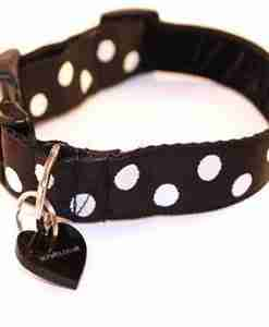 Polo dog collar and lead set