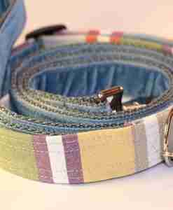 Scrufts' Cassata Pastel Striped Dog Collar and Wedgewood Blue Velvet Dog Lead