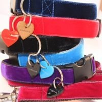 Scrufts' Velvet Dog Collars and Leads