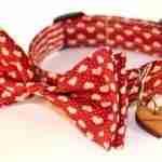 Scrufts' Dickie Valentine Bow Wow Wow Tie Dog Collar
