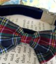 Scrufts' Dougal Velvet Dog Collar With Tartan Bow wow wow Tie