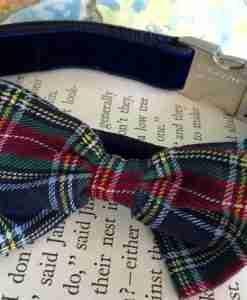 f5e4764b821f Scrufts' Dougal Velvet Dog Collar With Tartan Bow wow wow Tie