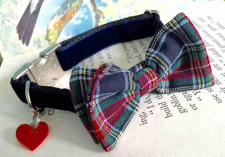 Scrufts' Dougal Velvet Bow Tie Dog Collar