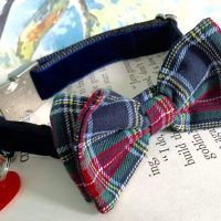 Scrufts' Dougal Velvet Bow Tie Dog Collar