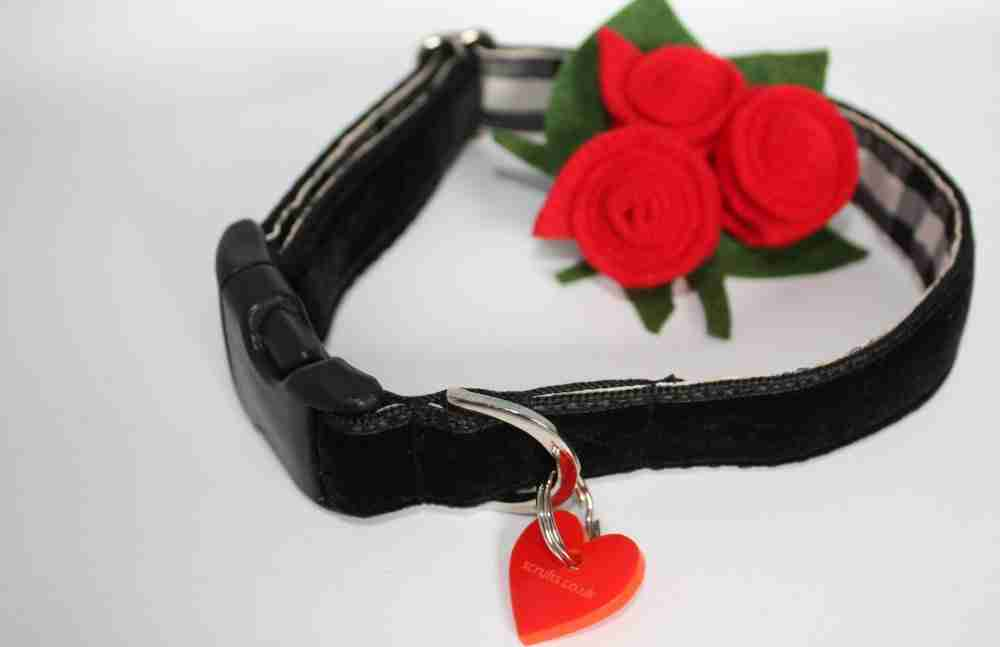Margaux Floral Velvet Dog Collar