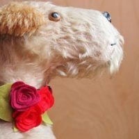 Scrufts' Flora Velvet and Floral Dog Collar