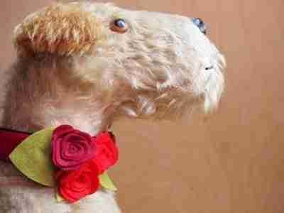 Scrufts' Flora Velvet and Floral Dog Collar