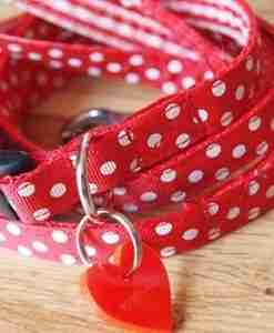 Scrufts Minnie Puppy Dog Collar and Lead