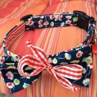 Scrufts' June Bug Bow Tie Dog Collar