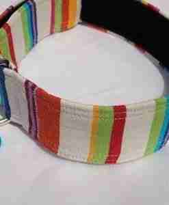 Brighton Rocks Hound Collar