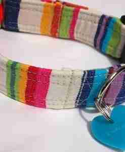 Brighton RocksCotton and Velvet Dog Collar