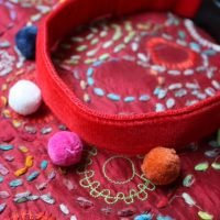 Scrufts' Dog Collars for Celebrations