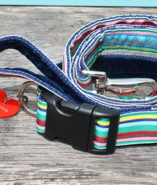 Scrufts Mint Chip Dog Collar and Lead