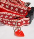 Scrufts' Dallas Texan Star Velvet Lined Dog Collar and Lead