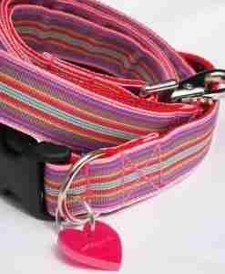 Scrufts' Striped Dog Collars and Leads