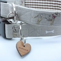 Scrufts' Barkley Border Terrier Dog Collar