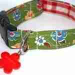 Campion Floral Dog Collar