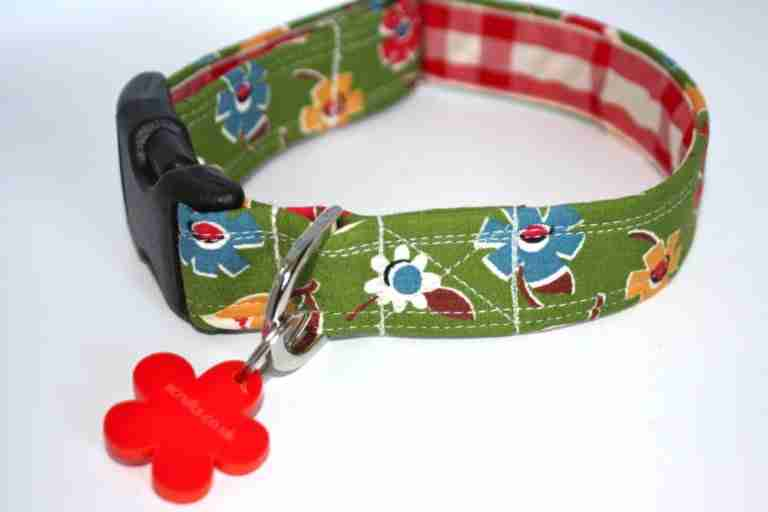 Campion Floral Dog Collar