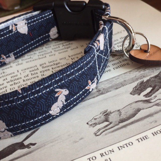 Scrufts' Thumper Dog Collar
