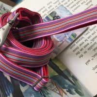 Scrufts' Mivvi Pink Multi Striped, Velvet Lined Dog Collar and Lead
