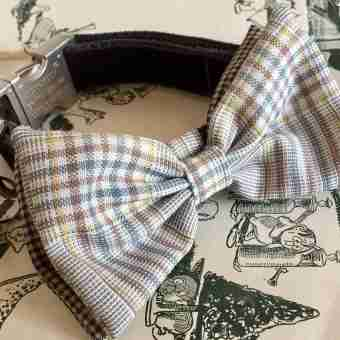 Scrufts' Astaire Bow Wow Wow Tie Dapper Dog Collar