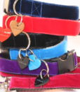 Scrufts' Lush Velvet Dog Leads
