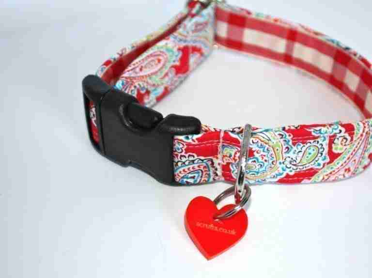 Scrufts' Gypsy Dog Collar