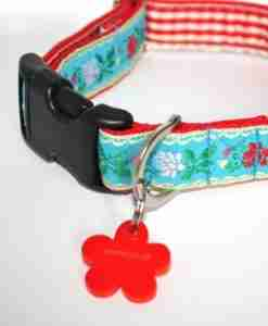 Scrufts' Eidelweiss Dog Collar