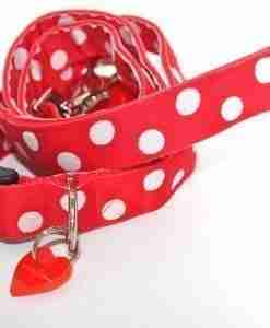 Scrufts' Oslo Red and White Polka Dot Dog Collar and Lead
