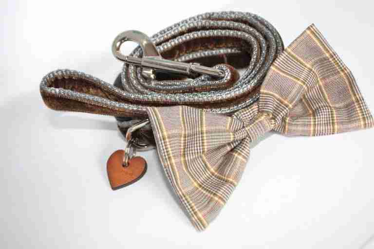 Scrufts' Mini Astaire Bow Wow Wow Tie Dog Collar and Velvet Lead