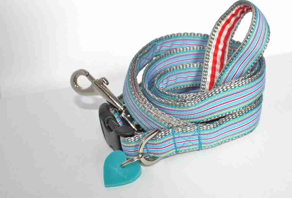 Scrufts' Minis Ice Pop Dog Collar and Lead