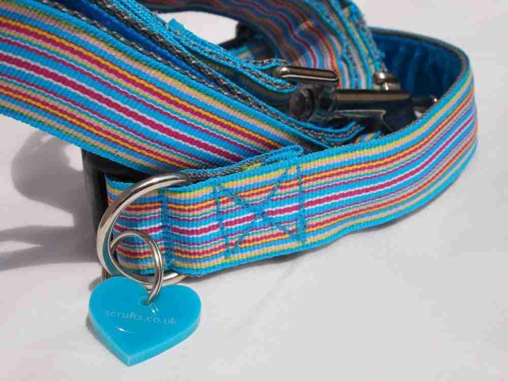 Contemporary Handmade Dog Collar. Ice Pop Dog Collar - Scrufts