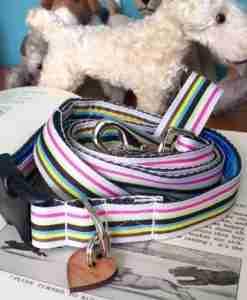 Scrufts' Neapolitan Striped Dog Collar and Lead