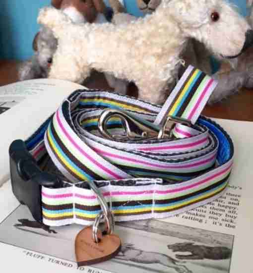 Scrufts' Neapolitan Striped Dog Collar and Lead