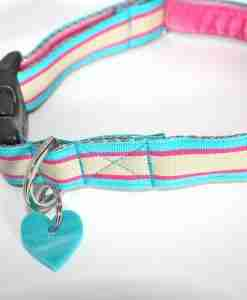 Scrufts' Zoom Striped Dog Collar