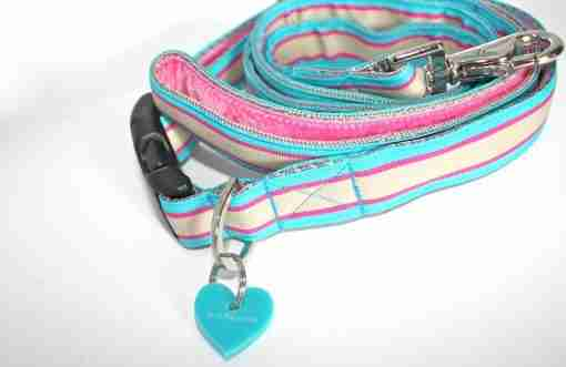 Scrufts' Zoom Striped Dog Collar and Lead