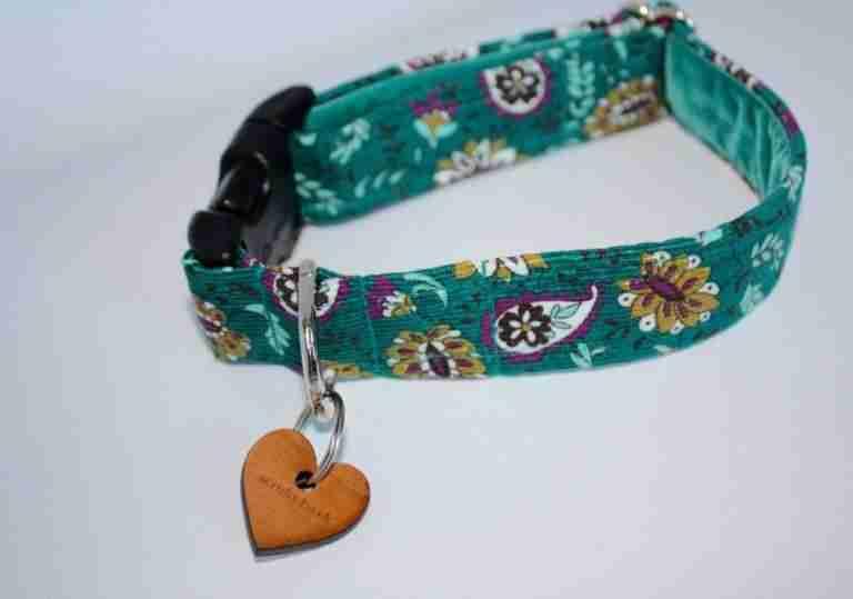 Scrufts' Friston Mini Corduroy Dog Collar
