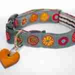 Scrufts' Mii Oska Dog Collar
