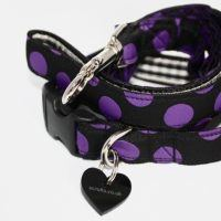 Scrufts' Charleston Black and Purple Polka Dot Collar and Lead
