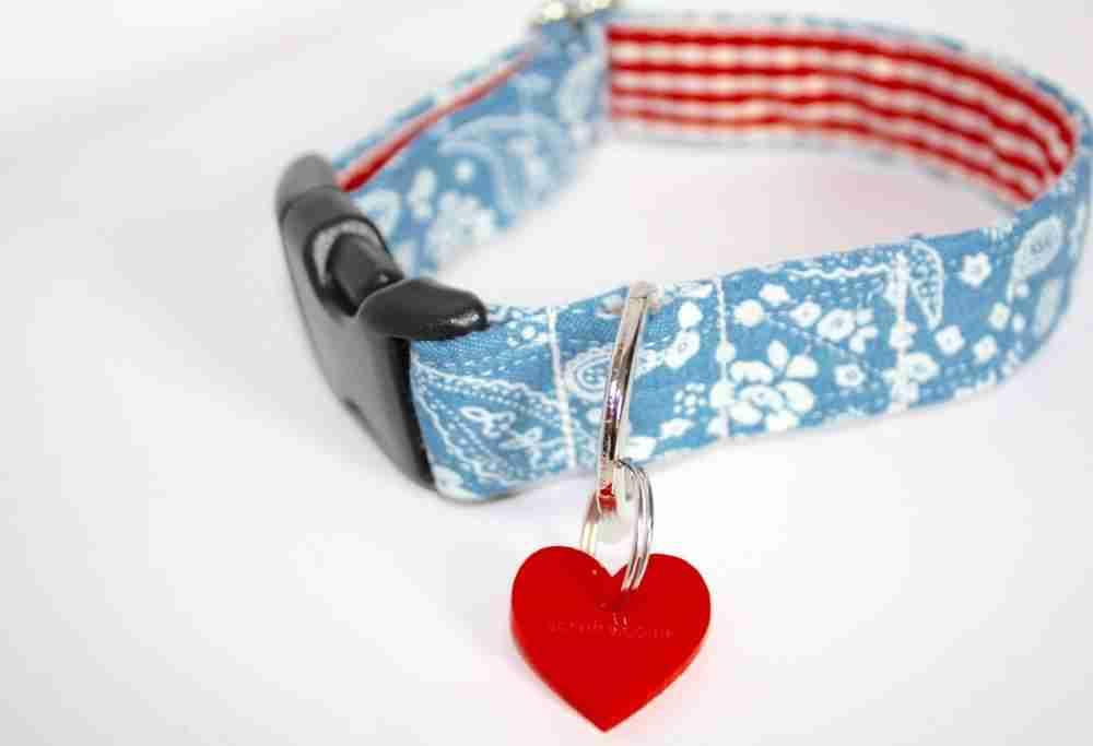 Scrufts' Ditsy Daisy Dog Collar