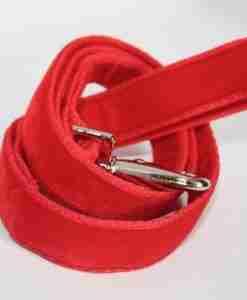 Scrufts' Red Velvet Dog Lead