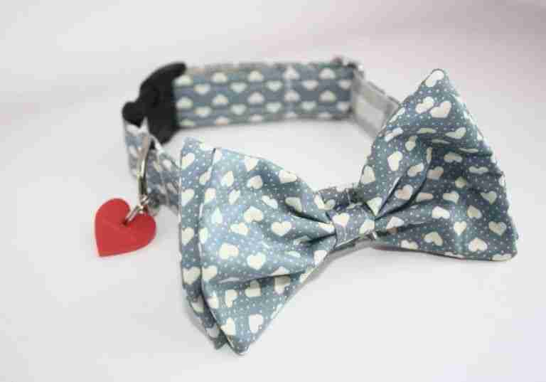 Scrufts' Blue Boy Valentine's Bow Wow Wow Tie Dog Collar