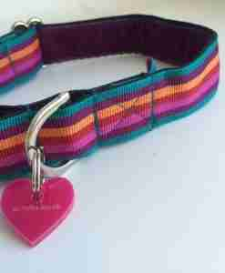 Scrufts' Brighton Striped Dog Collar